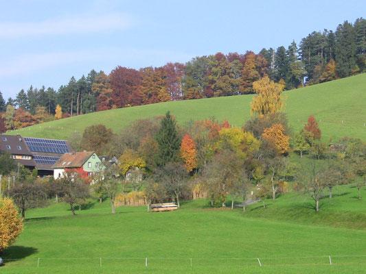 Moderne Heizung, Photothermie, Photovoltaik, Biogas, Wasserkraft