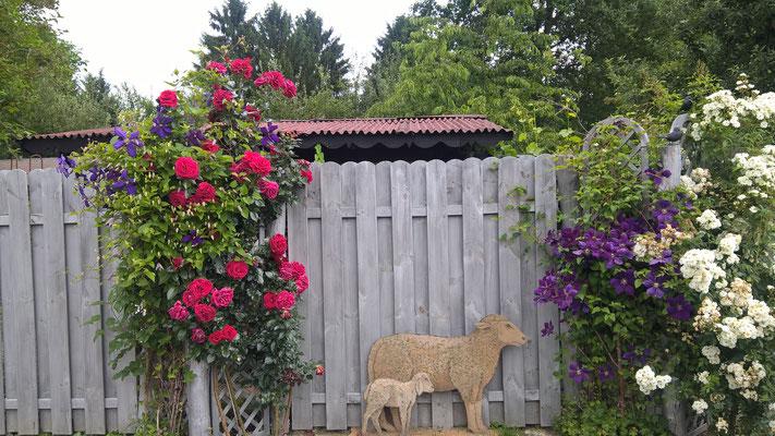 Schön gestaltete Wand im Garten Steinmetz