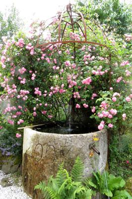 """Eingang zum Garten """"Woidrosl"""""""