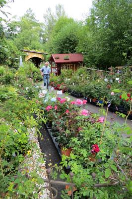 Man konnte auch die im Garten gesehenen Pflanzen kaufen