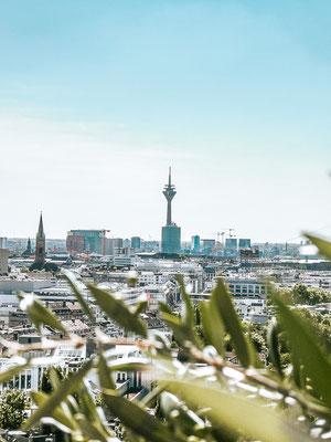 Entdecke die Top 10 Sehenswürdigkeiten in Düsseldorf und erfahre meine Highlights inkl. Informationen, Bilder und Insidertipps sowie Instagram Spots in Düsseldorf. Außerdem findest du die schönsten Aussichtspunkte, Ausflüge zum Schloss Benrath und Drachen