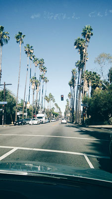 California Guide - 17 Insider Tips for your USA Westcoast Trip (incl