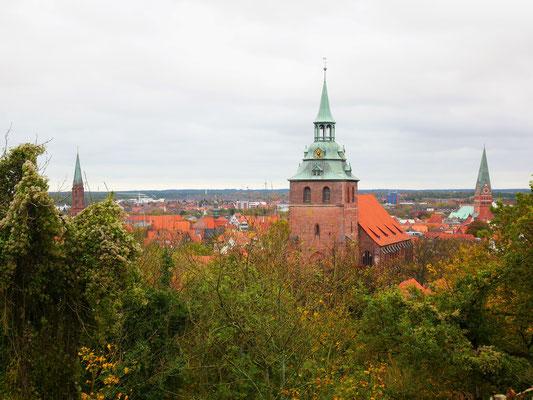 Michaeliskirche vom Kalkberg