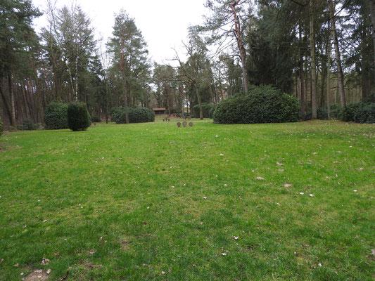 Hier liegen fast 3000 ermordete KZ-Häftlinge begraben, diese waren erst im April 1945 nach Sandbostel gekommen.