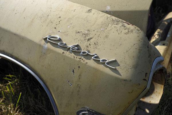 Opel ist ja nun auch französisch. Irgendwie.