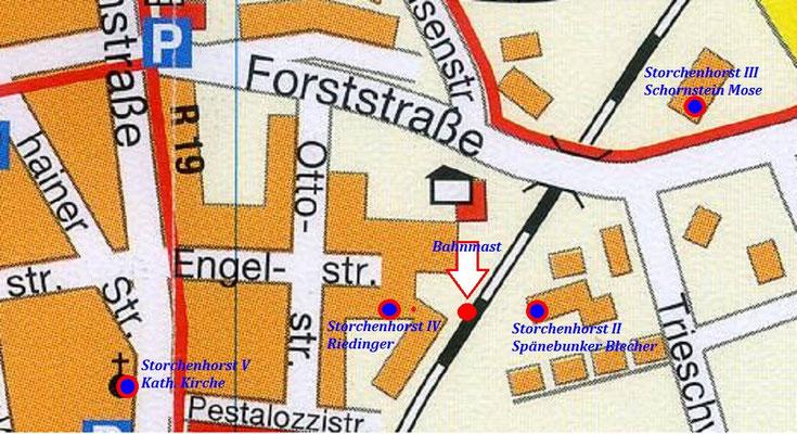 Vier Storchehorste befinden sich rund um den Bahnmast.