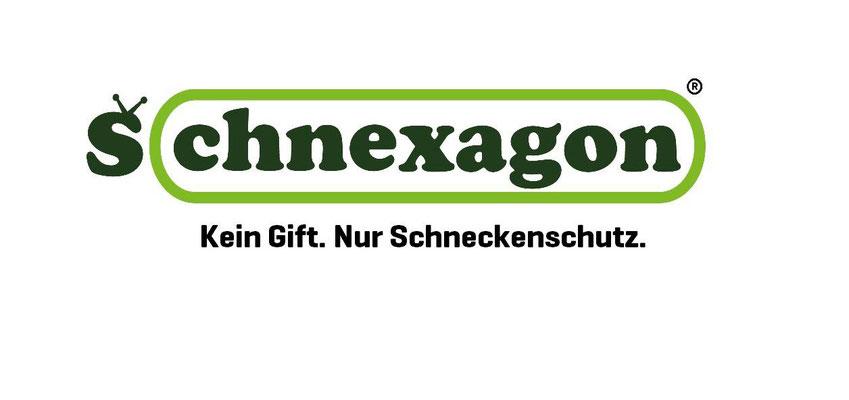 Schnexagon vorgestellt auf Startup Willi