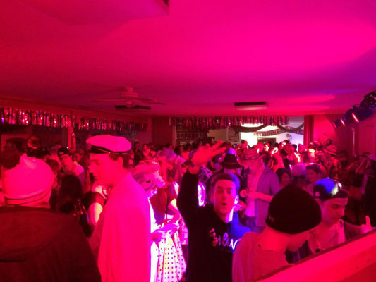 Faschingsparty 2015