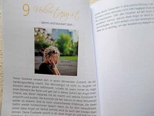 Botschaften im Begleitbuch