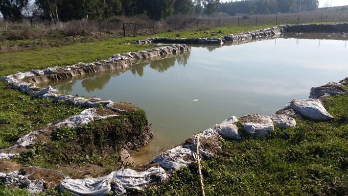 Am Tag nach der Überflutung.