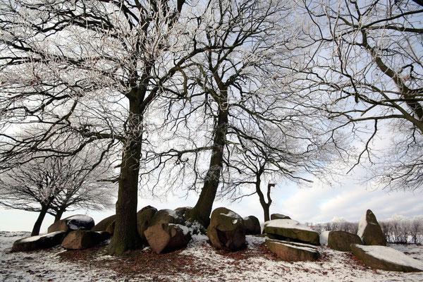 Grabanlage (© Straße der Megalithkultur, Andreas Hänel)