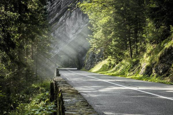 Unterwegs im Vallon de Noirveaux (Jura & Drei-Seen-Land). © Switzerland Tourism / Andreas Gerth