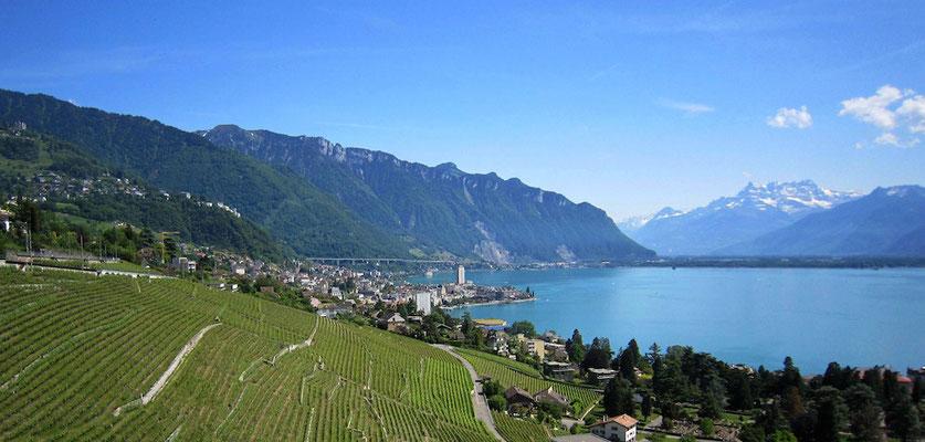 Montreux © Milner Hunziker