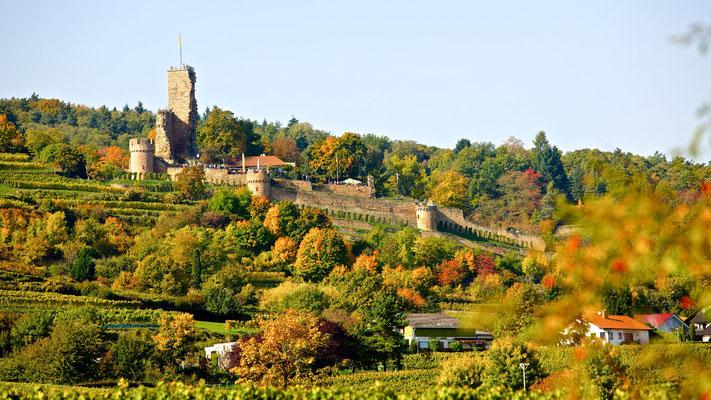 Burgruine Wachtenburg © Kurt Groß