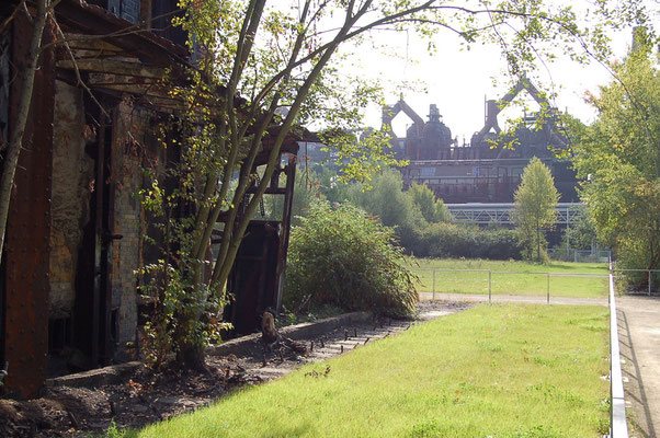 Impressionen vom Weltkulturerbe Völklinger Hütte > Das Paradies