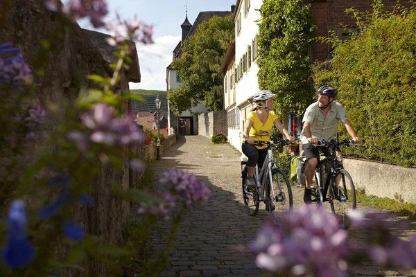 Impressionen von Baden-Württembergs Ferienstraßen