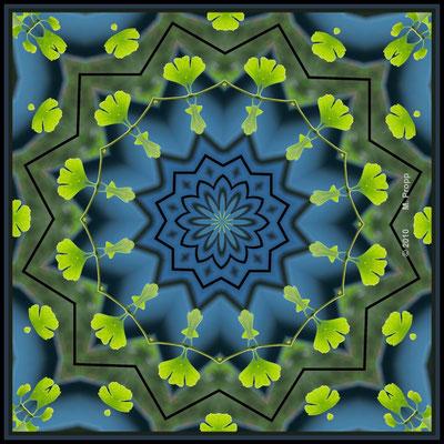 Ginko Mandala