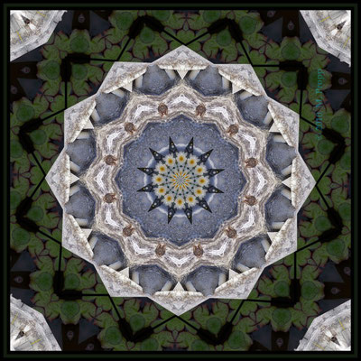 Kaleidoskop Collage mit Seerosen