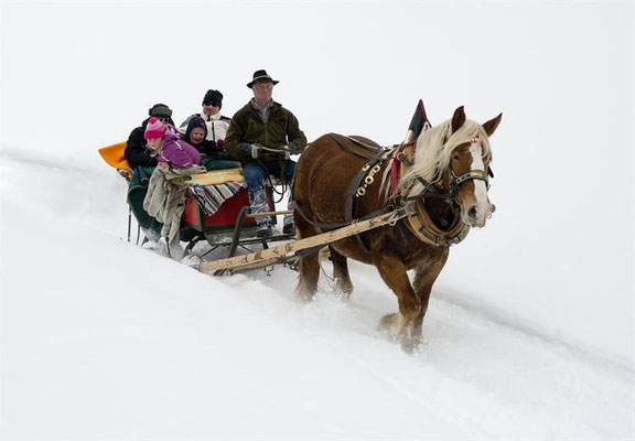 sleigh ride at Obervellach / Source: www.obervellach-reisseck.at