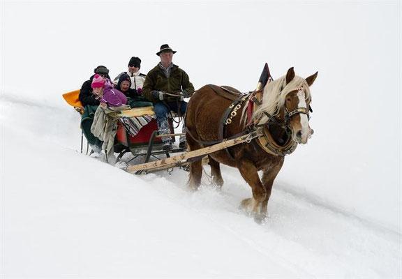 winterliche Pferdeschlittenfahrt, Obervellach / Quelle: www.obervellach-reisseck.at