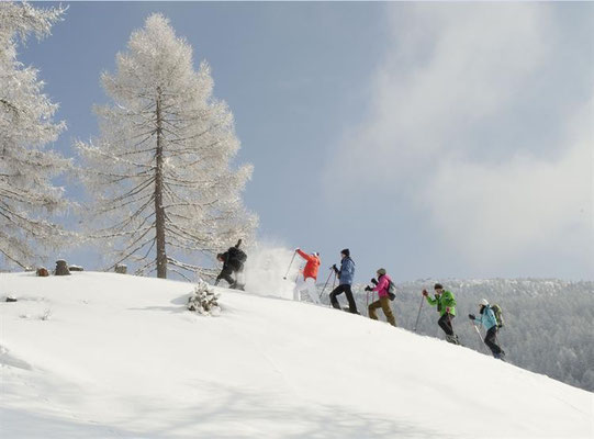 Skitouren / Quelle: www.obervellach-reisseck.at