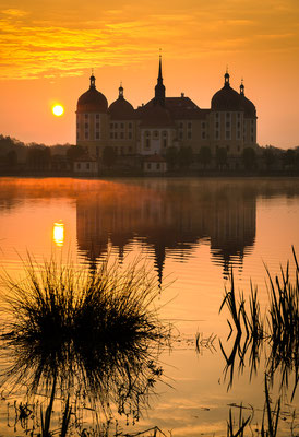 Morgenlicht am Schloß Moritzburg.