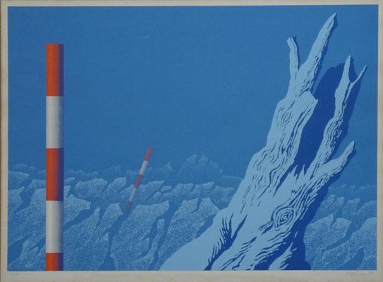 o.T. Auflage 43/50, signiert 1973, Blattmaß: 81 x 60 cm, Bildmaß: 78 x 56 cm