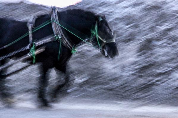 「吹雪を歩む」 丸山 悦子