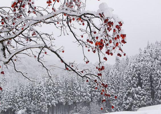「初冬」 山村 保