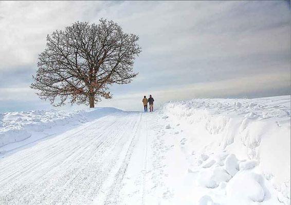 北本 修 白い風景
