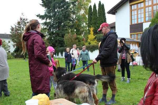 Hundetrainerin Sarah Lehner mit Gästen
