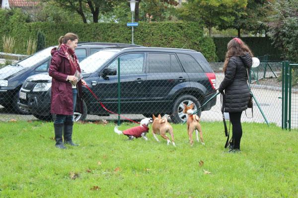 Taluna und Tiertrainerin Sarah Lehner freuen sich über die ersten Gäste