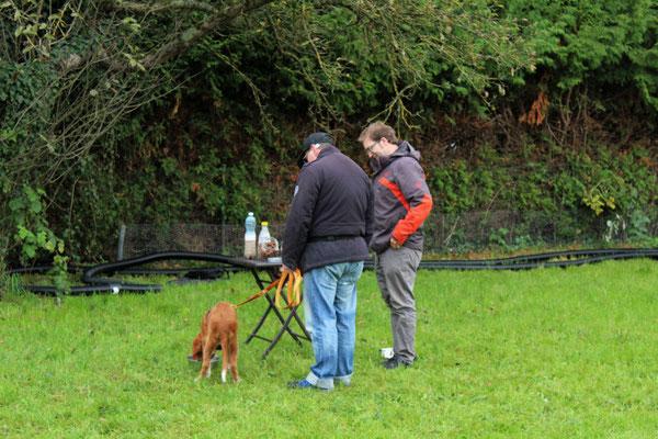 Auch Markus und Odin testen die Hundebar zusammen mit HundetrainerFranz Unterberger