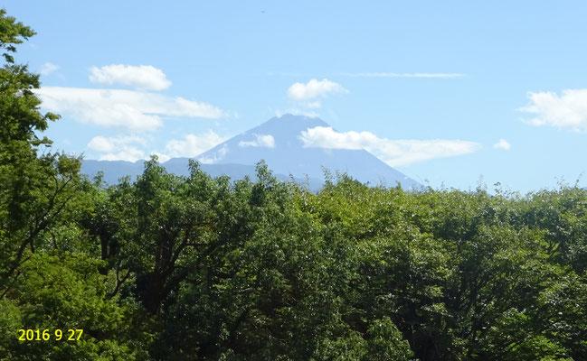 美術館から見た富士山