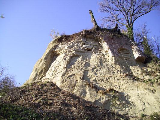 Consolidamento pareti - Disbosco e disgaggio - Piemonte - Provincia di Cuneo