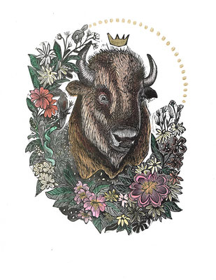 """Trophy III, Bison 10""""h x 8""""w. Hand Colored Edition of 10."""