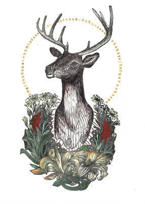 """Trophy I, Stag, 10""""h x 8""""w. Hand Colored Edition of 10."""
