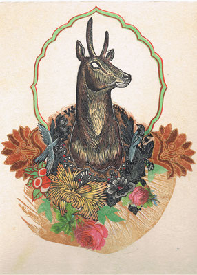 """Trophy II, Antelope, Collage. 14""""h x 11""""w."""
