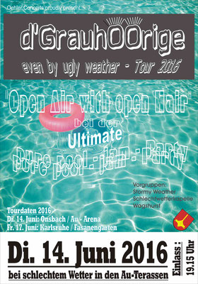 Plakat pure jam pool party