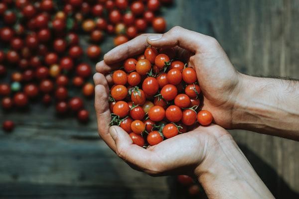 handcrafted Mexikaner Tomaten