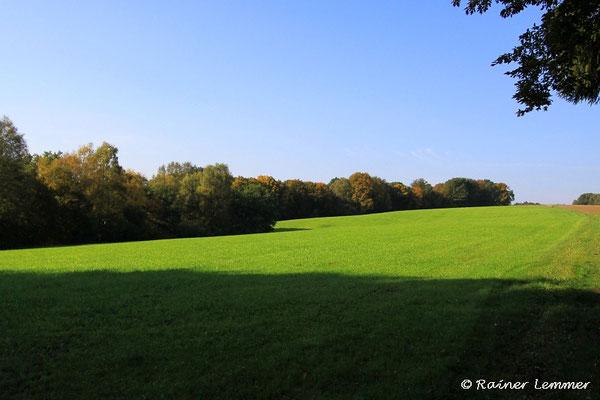 In der Nähe von Flammersfeld