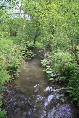 Grenzbach