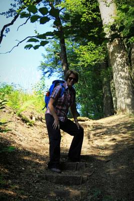 Abstieg in die Holzbachschlucht bei Nister