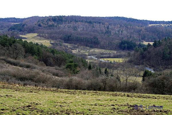 Blick in's Medenbachtal
