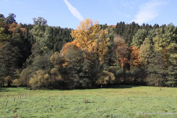 Grenzbachtal
