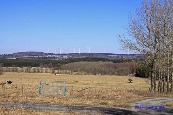 Blick auf Windpark Fuchskaute