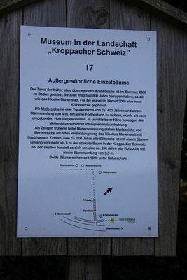 Bodendenkmal Natur