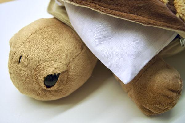 Schlaf gut Schildkröte