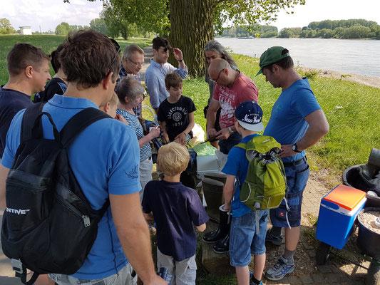 Der Goldwäscher Joachim Best erkärt anschaulich woher das Gold im Rhein kommt und wie man es wäscht.