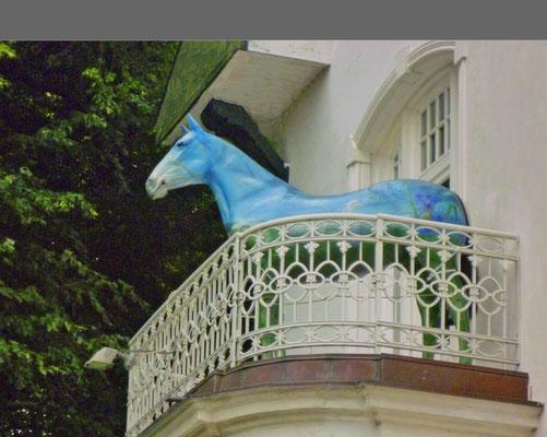 """""""WIE kommt denn das PFERD auf den Balkon?"""""""
